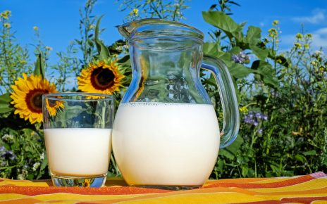 mleko w ciazy